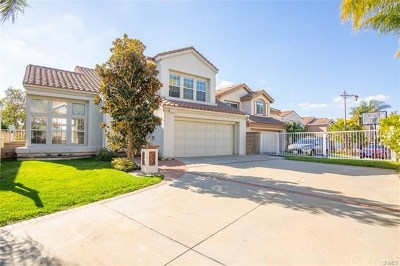 Anaheim Hills Rental For Rent: 8604 E Windsong Drive