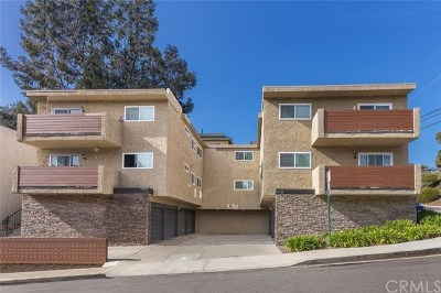Dana Point Multi Family Home For Sale: 33741 Olinda Drive