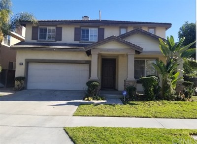Anaheim Single Family Home For Sale: 698 S Halliday Street