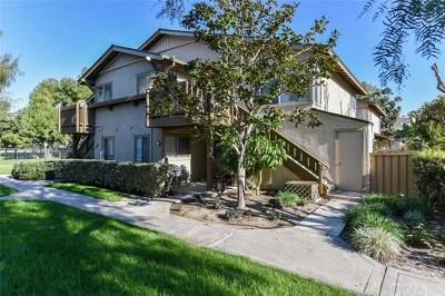 Irvine Condo/Townhouse For Sale: 46 Echo #16