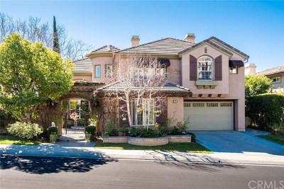 Coto de Caza Single Family Home For Sale: 29 Raleigh Court