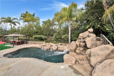 Yorba Linda Single Family Home For Sale: 21040 Timber Ridge Road