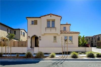 San Clemente Single Family Home For Sale: 110 Via Murcia