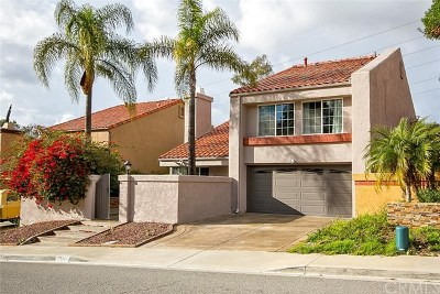 Laguna Hills Single Family Home For Sale: 25101 Luna Bonita Drive