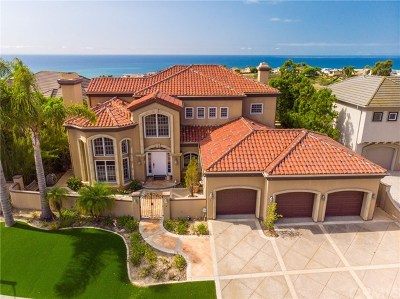 San Clemente Single Family Home For Sale: 4 Calle Ameno