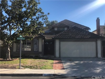 Orange County Single Family Home For Sale: 28102 Bluebell Drive