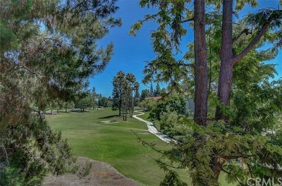 Laguna Woods Condo/Townhouse For Sale: 2393 Via Mariposa W #2H