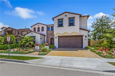 Orange County Single Family Home For Auction: 16 Calle Loyola