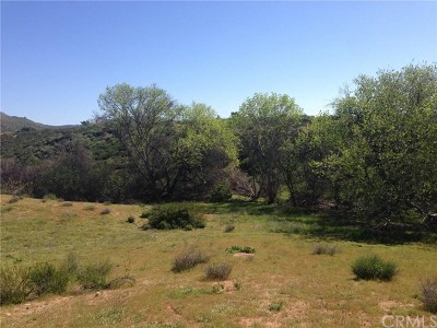 Wildomar Residential Lots & Land For Sale: Iodine Springs Rd