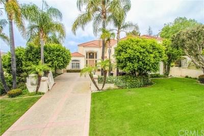 San Juan Capistrano Single Family Home For Sale: 27952 Golden Ridge Lane