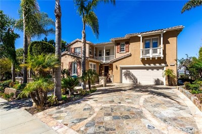 San Clemente Single Family Home For Sale: 4133 Costero Risco