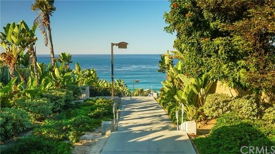 Dana Point Condo/Townhouse For Sale: 34114 Selva Road #319
