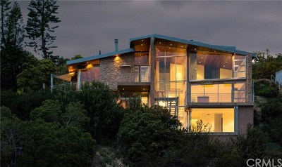 Single Family Home For Sale: 856 Diamond Street