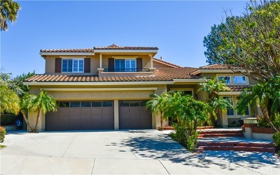 Anaheim Hills Single Family Home For Sale: 800 S Canyon Garden Lane