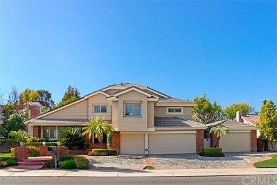 Laguna Hills Single Family Home For Sale: 27371 Hidden Trail Road