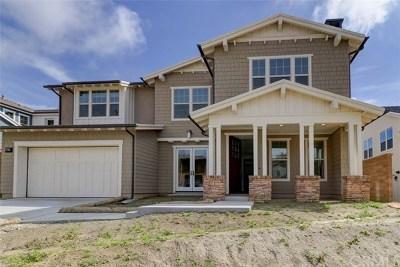 San Juan Capistrano Single Family Home For Sale: 26570 Paseo Tranquila