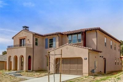San Juan Capistrano Single Family Home For Sale: 26541 Paseo Tranquila