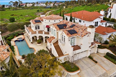 San Clemente Single Family Home For Sale: 12 Calle Ameno
