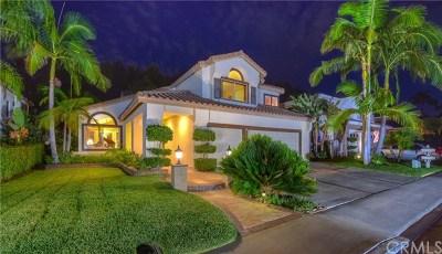 Trabuco Canyon Single Family Home For Sale: 28555 Malabar Road