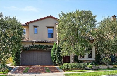 Irvine Single Family Home For Sale: 58 Valley Terrace