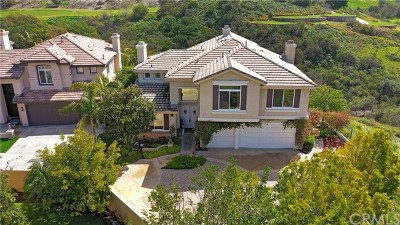 Rancho Santa Margarita Single Family Home For Sale: 31 Promontory