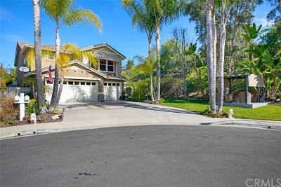 Trabuco Canyon CA Single Family Home For Sale: $1,249,000