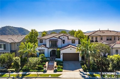 Dana Point, San Clemente, Laguna Niguel, Laguna Beach, Newport Beach, Newport Coast, Lake Forest, Mission Viejo, San Juan Capistrano, Aliso Viejo, Irvine, Tustin, Costa Mesa, Anaheim, Laguna Hills Single Family Home For Auction: 18 Via Paulina