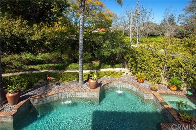 San Juan Capistrano Single Family Home For Sale: 26072 Calle Cobblestone