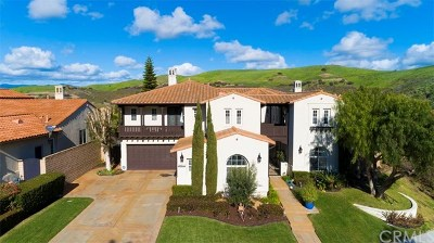 San Juan Capistrano CA Single Family Home For Sale: $1,589,000