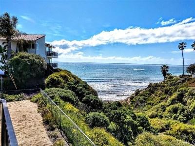 San Clemente Rental For Rent: 254 La Paloma #C