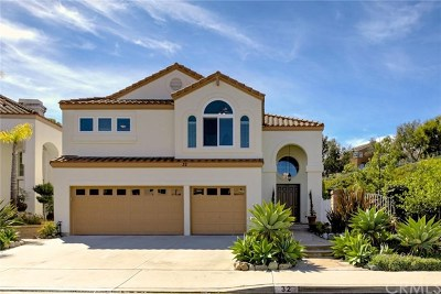 Mission Viejo Single Family Home For Sale: 32 Regalo Drive