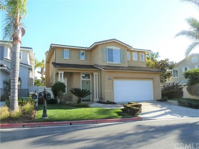 Dana Point Single Family Home For Sale: 24026 Atun