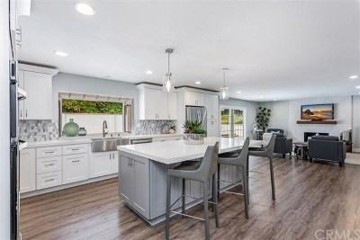 San Juan Capistrano Single Family Home For Sale: 33491 Via De Agua