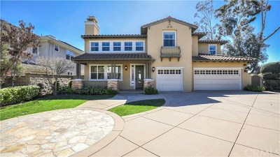 Dana Point Single Family Home For Sale: 1 Cobalt Drive