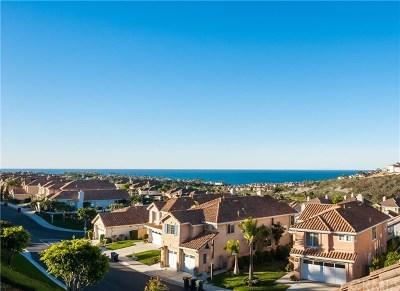 Dana Point Rental For Rent: 29 San Raphael