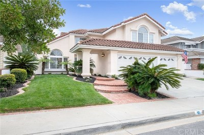 Laguna Niguel Single Family Home For Sale: 16 Redondo