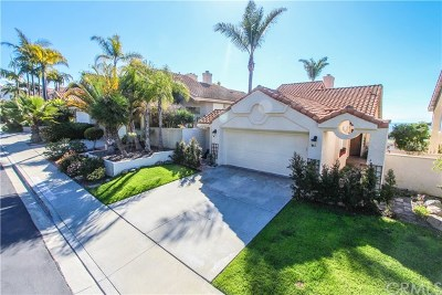 Dana Point Single Family Home For Sale: 83 Palm Beach Court