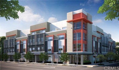 Long Beach Condo/Townhouse For Sale: 219 Elm Ave