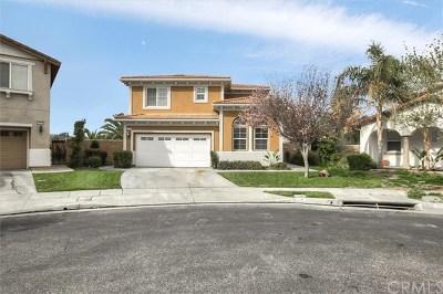 Hemet Single Family Home For Sale: 3131 Greengable Lane