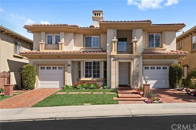 Dana Point  Single Family Home For Sale: 12 Via Monarca Street