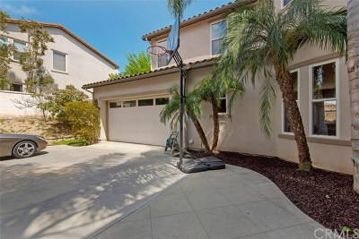 San Clemente Single Family Home For Sale: 24 Calle Vista Del Sol
