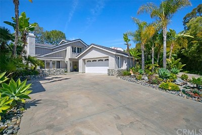 Dana Point Single Family Home For Sale: 24903 Danamaple