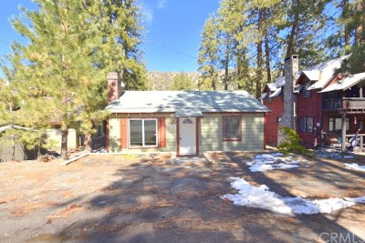 Wrightwood Single Family Home For Sale: 1232 Irene Street