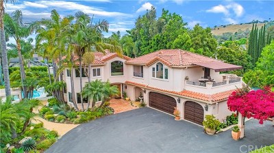 San Juan Capistrano Single Family Home For Sale: 31941 Paseo Cielo