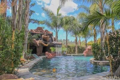 La Mesa Single Family Home For Sale: 9175 Fletcher Drive