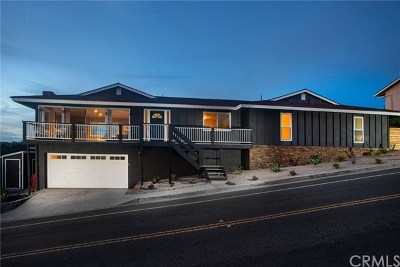San Clemente Single Family Home For Sale: 4120 Calle Bienvenido