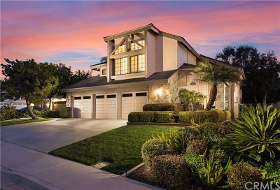 Mission Viejo Single Family Home For Sale: 28612 Mill Pond