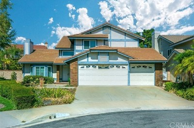 Diamond Bar Single Family Home For Sale: 24307 Knoll Court