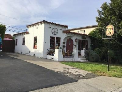 Orange County Commercial For Sale: 143 Avenida Granada