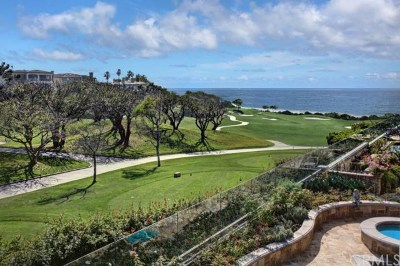 Dana Point Single Family Home For Sale: 2 Monarch Cove